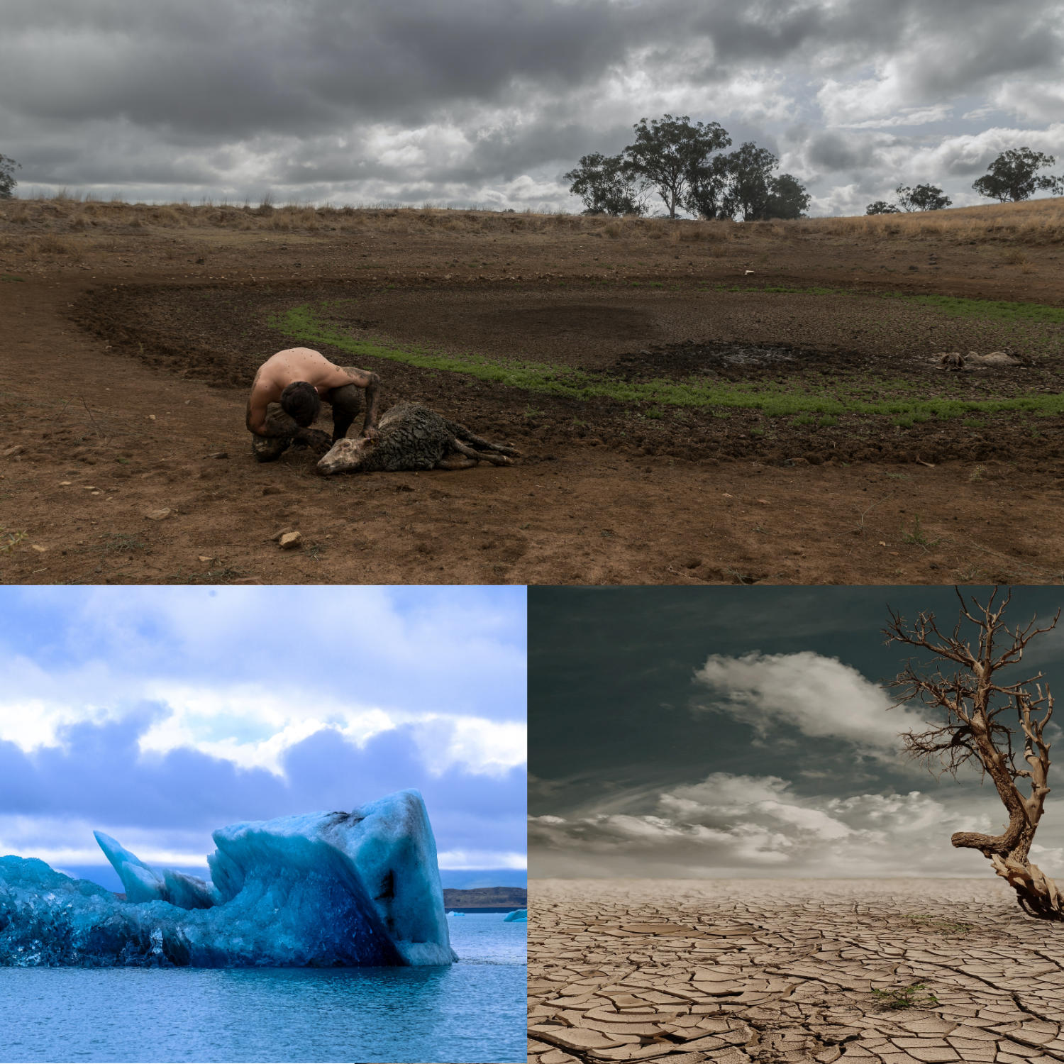 Climatic-change-consequences
